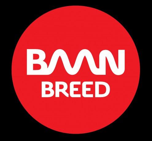 Logo Baanbreed